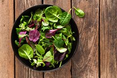 Préparation fraîche de salade des épinards de bébé, des feuilles d'arugula, de basilic et de cardon Photo stock