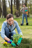 Préparer le jardin pour l'été Photos stock
