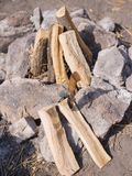 Préparer un feu de camp pour des amis de pique-niques Vacances d'été en plein air avec un feu Voyage d'été des vacances Image stock