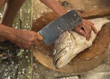 Préparer un poisson de mérou pour la nourriture photos stock