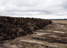 Préparez le sol pour la plantation Fond de texture d'engrais organique et de sol Vue supérieure photos libres de droits