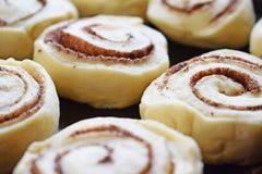 Préparez les biscuits délicieux de cannelle image libre de droits