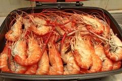 Préparez les grandes crevettes roses fraîches coulées dans la casserole Photo stock