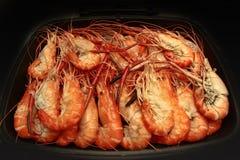 Préparez les grandes crevettes roses fraîches coulées dans la casserole Images stock