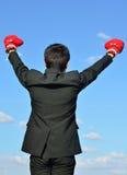 Préparez pour combattre au-dessus du ciel bleu Photographie stock libre de droits