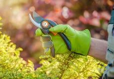 Préparez pour des travaux de jardin photographie stock