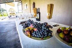 Préparez pour l'échantillon de vin sur le vignoble de famille en Grèce photos libres de droits