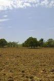 Préparez pour la plantation Photographie stock