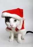 Préparez pour Noël Photographie stock libre de droits