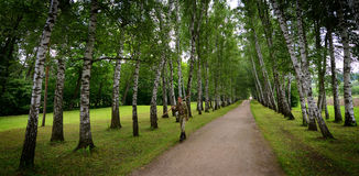 Préposé à l'entretien d'un terrain de sport russe au domaine de pays de Tolstoy photographie stock libre de droits