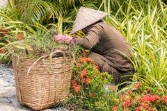 Préposé à l'entretien d'un terrain de sport vietnamien travaillant dans le jardin Photographie stock libre de droits