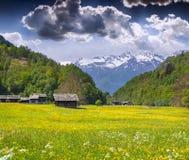 Prés alpins près du village de Bondo Photographie stock