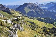 Prés alpins verts et première neige légère Images stock
