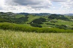 Prés, collines vertes et nuages Photo stock