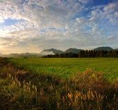Prés d'automne dans le coucher du soleil Image stock
