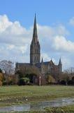 Prés de cathédrale de Salisbury et d'eau inondée Photo stock