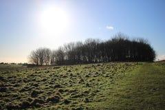 Prés du Sussex Images stock