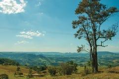 Prés et arbres dans une vallée verte avec le paysage accidenté photographie stock libre de droits