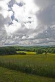 Prés nuageux Images libres de droits