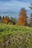 Prés verts au-dessus de luzerne de lac, Alpes, Suisse Photographie stock