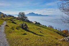 Prés verts au-dessus de luzerne de lac, Alpes, Suisse Photographie stock libre de droits