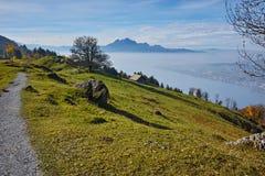 Prés verts au-dessus de luzerne de lac, Alpes, Suisse Photo libre de droits