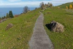 Prés verts au-dessus de luzerne de lac, près de bâti Rigi, la Suisse Photos stock