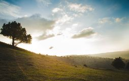 Prés verts dans les montagnes du Turkménistan Photo stock