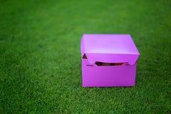 Présent Gâteaux délicieux et beaux dans une boîte Pique-nique Images stock