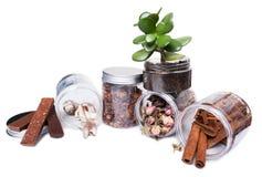 Présentation transparente de récipients d'entreposage ou de pots de cuisine à la maison Images stock