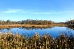 Préservation de la nature Soos près de la petite ville de Bohème occidentale Frantiskovy Lazne Franzensbad de station thermale en Image libre de droits