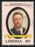 Président des États-Unis Theodore Roosevelt photos stock