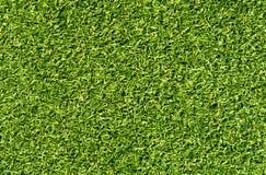 Prêt décoratif d'herbe de couleur verte pour le sport et les loisirs photo stock