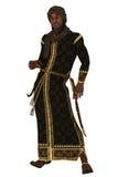 Príncipe das noites árabes ilustração stock