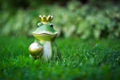 Príncipe de la rana fotografía de archivo