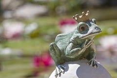 Príncipe de la rana en la charca del lirio de agua Imágenes de archivo libres de regalías