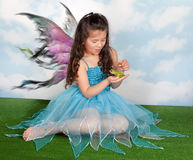 Príncipe e fairy da râ imagens de stock