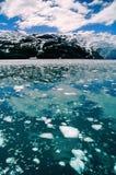 Príncipe Guillermo Sound, Alaska Fotos de archivo libres de regalías