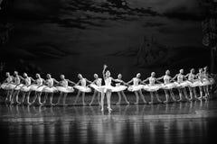 Príncipe Siegfried cae en amor con el lago swan del Ojta-ballet de la princesa del cisne Imagenes de archivo
