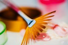 Próbki różowe kosmetyczne śmietanki z złotym fan szczotkują i ochraniacze Obrazy Royalty Free
