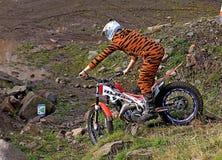 Próbna motocyklista pozycja na rowerze w tygrysim kostiumu fotografia stock