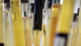 Próbne tubki w lab zbiory