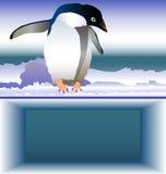 prövkopia för fo-kontorspingvin Royaltyfria Bilder