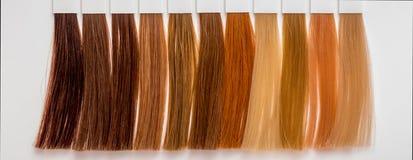 Prövkopior av hår av olika färger för att färga i frisering s royaltyfri bild
