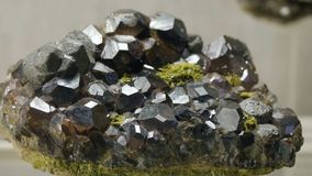 Prövkopior av vaggar, eller mineral vaggar, som föreställs i museet av geologi som framläggas i en enkel kopia royaltyfria foton