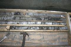 Prövkopior i kärnaasken arkivfoto
