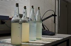 Prüfen Sie Wasserproben im Labor Lizenzfreie Stockfotos
