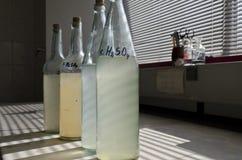 Prüfen Sie Wasserproben im Labor Stockbild