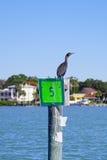 Prędkość podpisuje wewnątrz Zatoka Tampa Obraz Stock