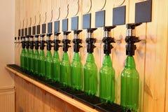 Prętowy piwny upadek Piwo odpierający Mszalny piwo na klepnięciu Nalewałem mnóstwo piwne butelki Obraz Stock